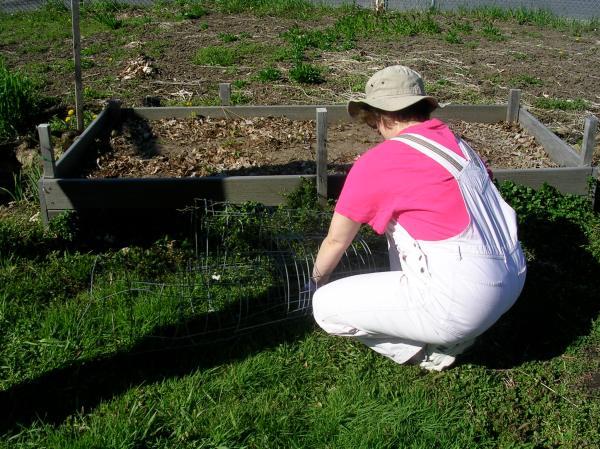 Sue working on her plot