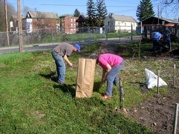 Cleaning up the plots