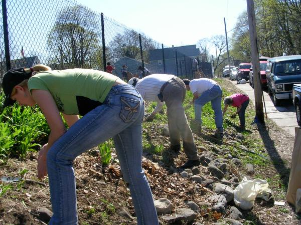 Weeding the flowerbed outside the garden