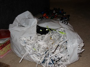 Suicidal kitty in a plastic bag of shredded paper