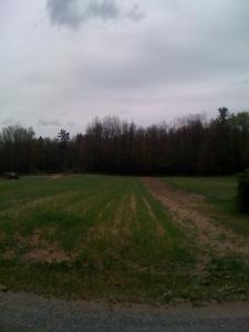 More farm fields