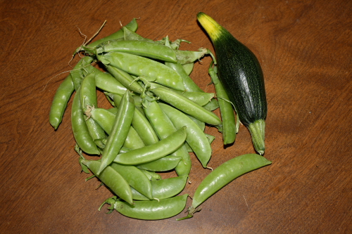 Sugarsnap peas and partially bad small zucchini