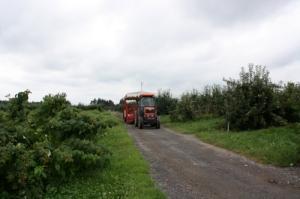Tractor cart