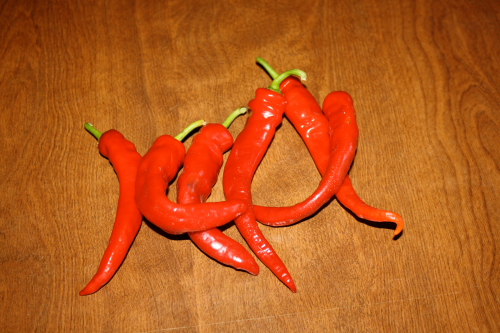 Long hot chili peppers